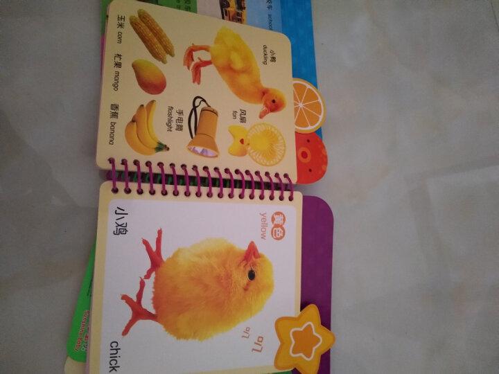 阳光宝贝 0-3岁七彩趣味启蒙书(套装6册)视觉启蒙益智玩具幼儿翻翻书 晒单图