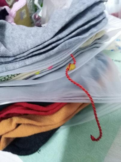 袜子女短袜浅口韩国可爱船袜棉秋冬款长袜冬季中筒袜韩版学院风 纯色运动短袜(5双装) 均码 晒单图