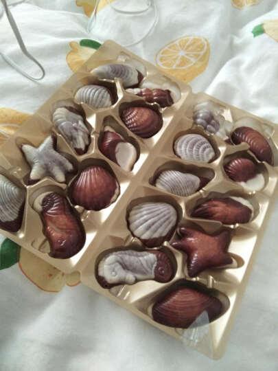 Hamlet哈姆雷特比利时进口 巧克力礼盒装海洋萌物生日白色情人节送男女朋友礼物 晒单图