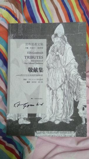 贡布里希文集:敬献集 西方文化传统的解释者 晒单图