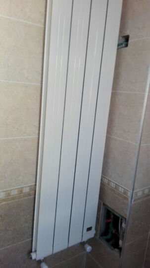 欧朗德 暖气片 铜铝复合 双水道 暖气 645mm高 晒单图