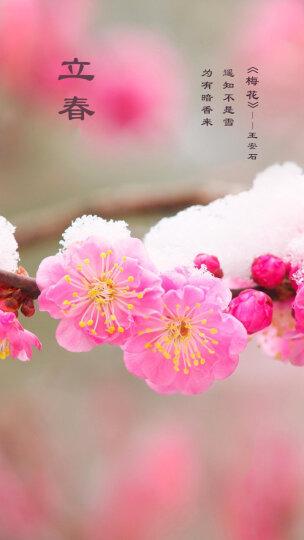 俞兆林童装儿童外出服套装男童女童空气棉长袖套装 彩色帽子-樱桃红 80CM 晒单图