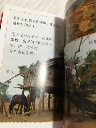 DK儿童目击者·第1级(套装全20册) 晒单图