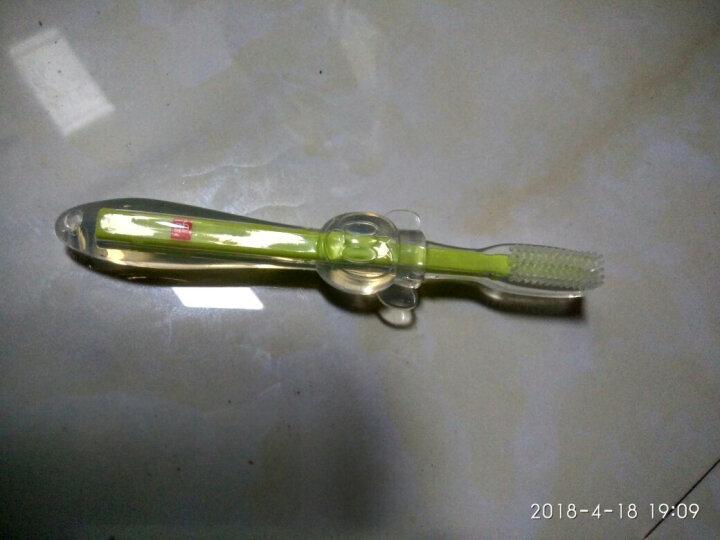 好孩子(gb)儿童牙刷婴儿宝宝牙刷1岁2岁儿童牙膏可吞咽婴幼儿指套牙刷新生儿护齿啫喱 乳牙用牙刷(6月以上) 晒单图