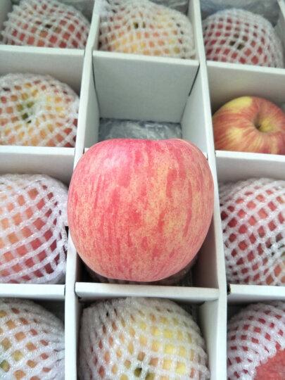 洛川苹果 陕西红富士苹果  20个80 约4.75kg 苹果水果礼盒 新鲜时令水果 20枚80 晒单图