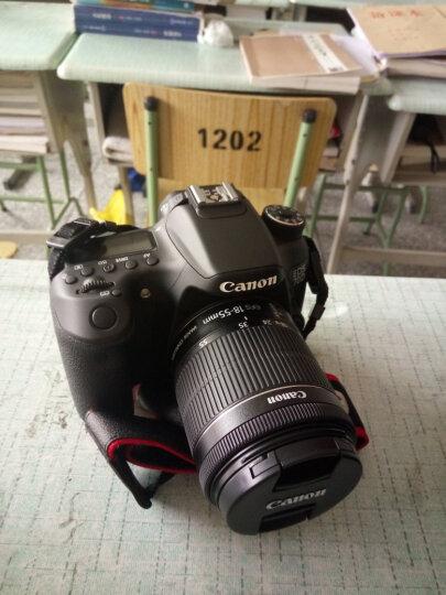 佳能(CANON) 70D/60D/80D/77D/750D/800D单机身中端级数码单反相机套装 佳能80D+EF18-55STM套机 官方标配 晒单图