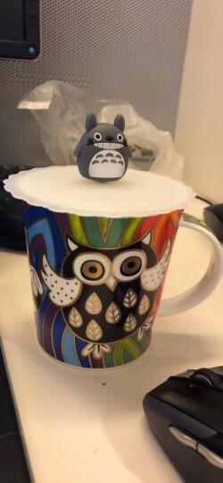 DUNOON丹侬英国进口杯子 咖啡杯马克杯陶瓷杯情侣杯杯子创意骨瓷杯 猫头鹰 温馨 晒单图
