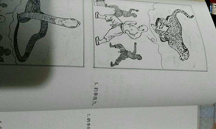 中华武术经典珍藏丛书:少林正宗内功五拳 晒单图