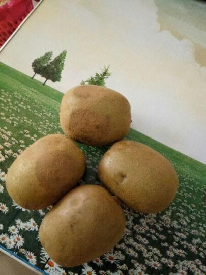 【西峡馆】西峡奇异果 黄心猕猴桃 国产新鲜水果 24个装单果70-90g 晒单图