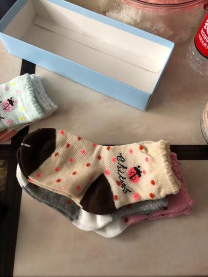 浪莎童袜子夏薄网眼精梳棉袜女童男童男孩女孩中筒短袜 6双礼盒-小猫咪 脚长16-18cm(适合3-5岁) 晒单图
