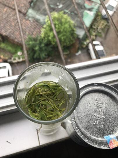 【正常发货】原始森林 高山云雾江西绿茶特级野茶2019年新茶 明前茶共150克 晒单图