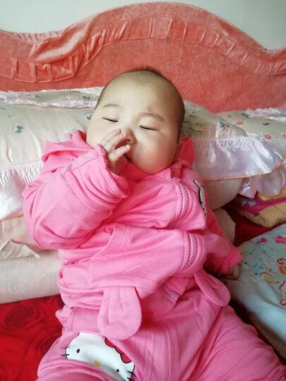 0-6个月婴幼儿服装0-1-2岁女宝宝套装棉衣纯棉卡通可爱卫衣儿童装一岁秋装两岁婴儿春秋装 红兰  针针绒  加厚小猫套装 80/48(身高80-87cm) 晒单图