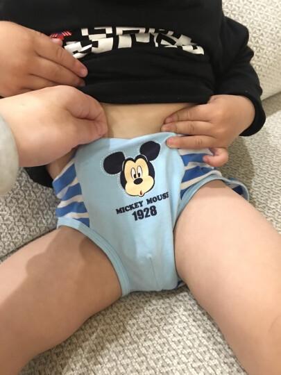 迪士尼宝宝儿童内裤三角男童小内裤棉小孩短内裤婴幼儿平角男宝两条装 B款 浅蓝+灰白色织条 110cm 晒单图