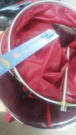 比尔傲威(billalways)涂胶防挂鱼护 鱼网兜鱼篓装鱼网袋渔具 竞技精品 45cm*2.5米酒红色 晒单图