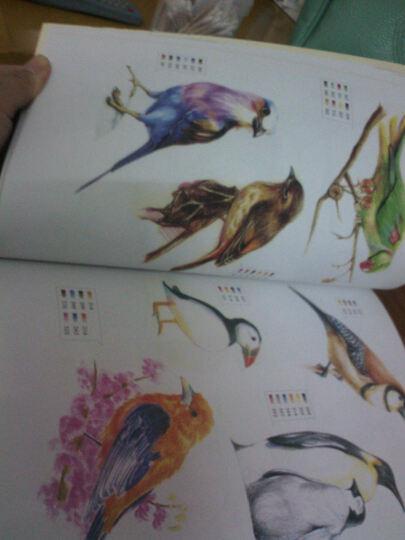 色铅笔画大全1000例 图案很丰富