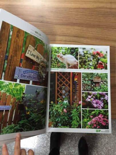 私家庭院 简约欧式庭院风格 自然景观 别墅花园 多种风格庭院设计书籍 晒单图