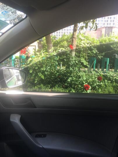 标榜浓缩清洁剂玻璃去油膜清洁剂水清洁剂汽车洗车家用清洁剂 晒单图