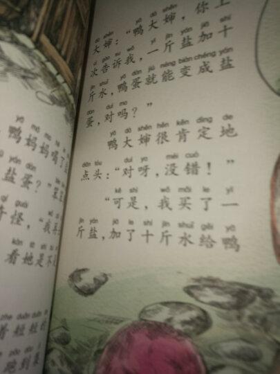 杨红樱作品珍藏版:瞧,这些老师 晒单图