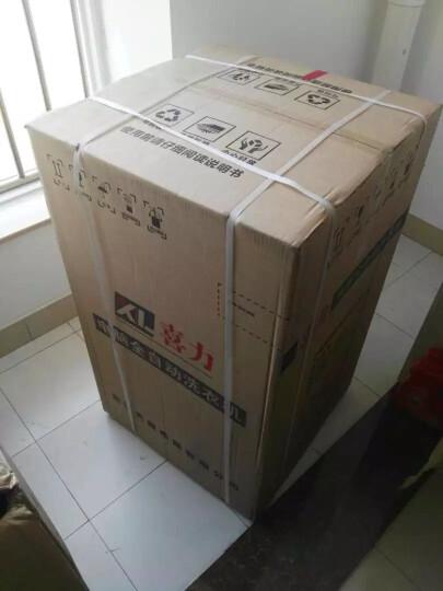 喜力(XIL) XQB55-568M 洗衣机全自动 波轮式洗衣机小型家用迷你【送货上门】 晒单图