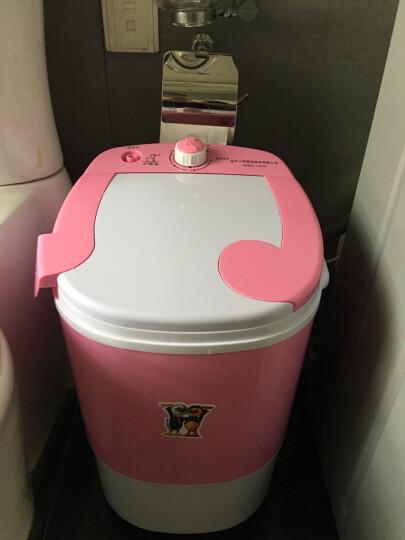 小鸭 2.5公斤迷你洗衣机 小单筒半自动宝宝婴儿童洗沥一体 粉红色 晒单图
