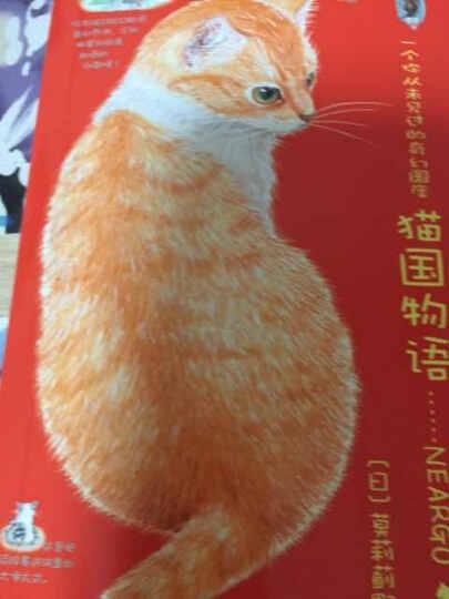 风靡全球的猫迷绘本(猫国物语+子猫絮语+猫城小事 2014年新版 套装共3册) 晒单图