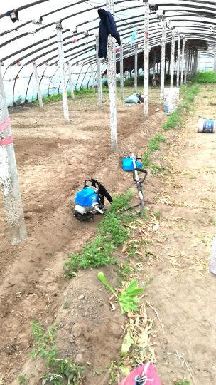 森牛(SENNIU) 森牛四冲程割草机汽油机锄草松土除草机锄地打草草坪背负式割灌园林工具 精品种植机+总程 晒单图