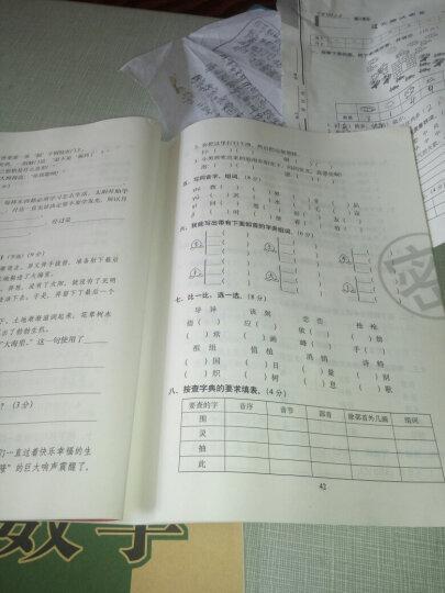 2019春期末冲刺100分二年级下册语文数学 人教版2下语文数学书课本同步单元测试卷期末冲刺试卷 晒单图