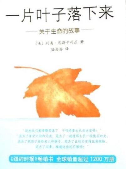 一片叶子落下来:关于生命的故事(2014版)  晒单图