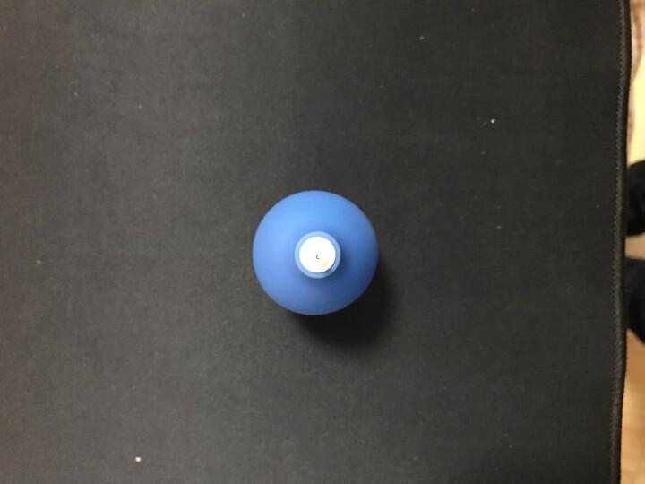 Earlymen 天空蓝便携迷你气吹 吹气球 相机电脑清洁除尘 环保无味 小身材 大风量 晒单图