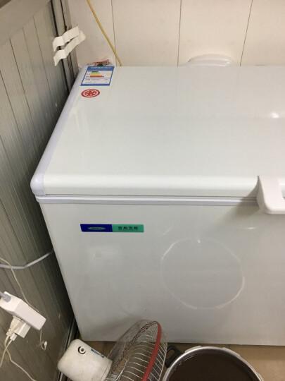 百利(BAILI) 420升商用冻肉海鲜冰柜 冷藏冷冻转换冷柜单门低温-25度冰箱BD/BC-420 晒单图