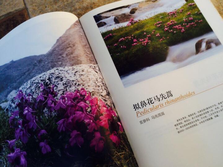 雅鲁藏布的眼睛:大峡谷生物多样性观测手册 晒单图