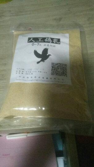 鸽乳0-7天 鸽子斑鸠奶粉出壳饲料 250克  鸽粮 人工孵化 喂养 灌喂 鸽乳 晒单图