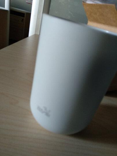 飞达三和 漱口杯子口杯刷牙杯 N1101 晒单图