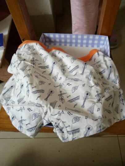 红豆(Hodo)儿童内裤男中大童A类标准三条盒装小孩卡通印花四角裤HDK771 170 晒单图