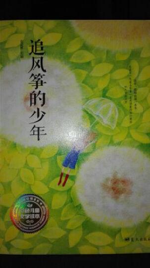 安武林主编第一套彩色儿童文学读本:追风筝的少年 晒单图