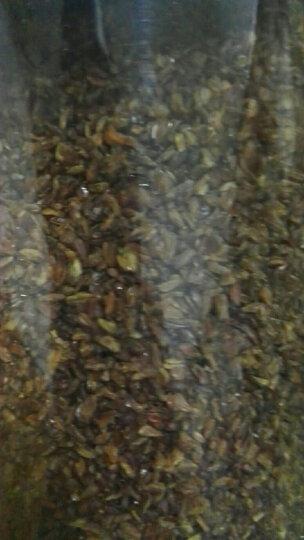 【买2送1再送杯】黑苦荞茶500g 四川凉山全胚芽荞麦茶 荞子茶罐装 养生茶男女 黑苦荞茶500g/罐 晒单图