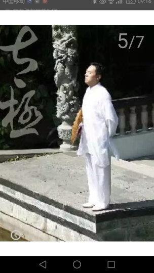 零基础学正宗陈氏太极拳(附光盘) 晒单图