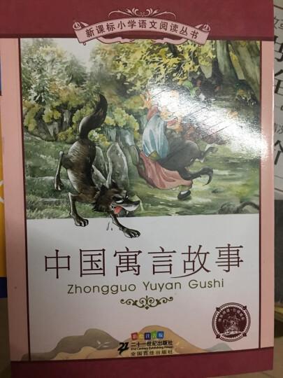 新课标小学语文阅读丛书:中国寓言故事 (第5辑 彩绘注音版) 晒单图