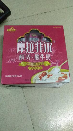 皇氏 摩拉菲尔 醇养酸牛奶(红枣枸杞味)205g*12盒/礼盒装 晒单图