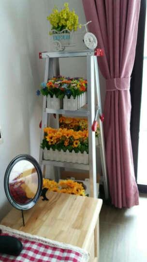 酷宝(Kubao) 家居装饰品摆件家庭家里摆设客厅房间电视酒柜新房现代工艺创意小 30cm康乃馨桔色 晒单图