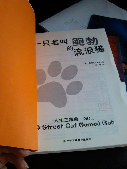 一只名叫鲍勃的流浪猫 晒单图