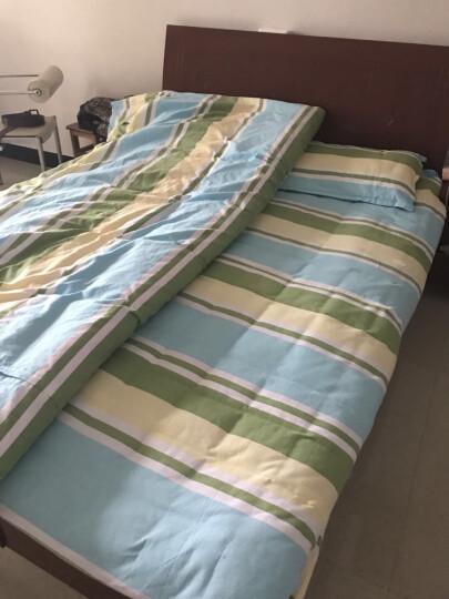 【起球包退】四件套纯棉老粗布床单被罩套 100%全棉床单套件双人床上用品加厚加密可定做 条纹4 2.0m拍下48小时发货 晒单图
