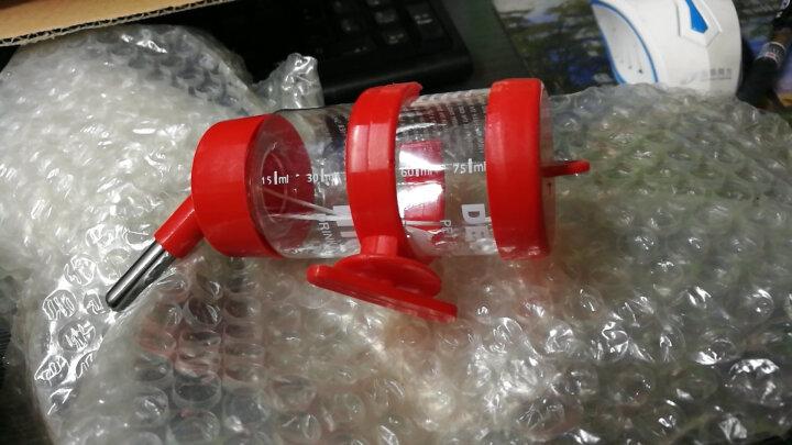洁西弹簧双滚珠防呛宠物水壶豚鼠龙猫兔子水壶兔子饮水器 挂式水壶500毫升 晒单图
