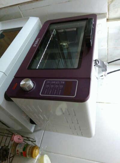 忠臣(loyola)电烤箱小微电脑控制15L家用多功能嵌入式时尚紫LO-X3 晒单图