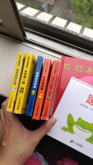 米菲的拼插书(套装共2册)我的家/一家亲 晒单图