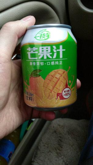一枝笔 【莱阳馆】包邮芒果汁饮料60%果肉饮品灌装245ml*6罐组合 晒单图