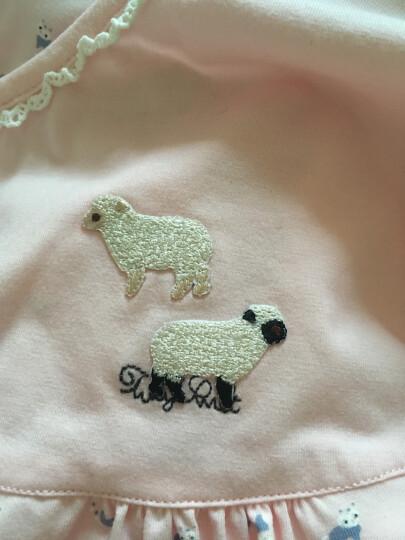日本可爱小号动物刺绣烫布贴时尚儿童衣服补丁贴diy修补洞装饰贴 考拉 晒单图