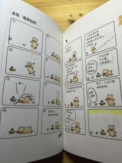 想太多的猪6:反正都会过去 晒单图