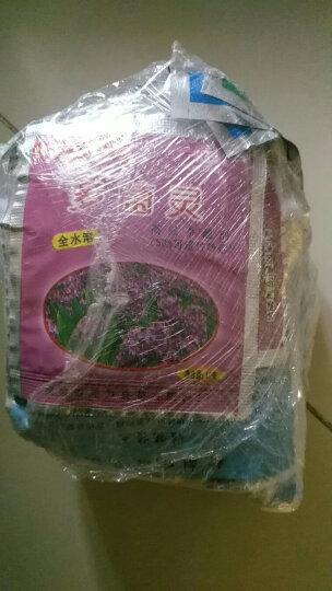 米蔻 营养土 椰砖 多肉花肥料 生根粉   多肉土  有机肥 月季肥 复合肥 多菌灵 晒单图