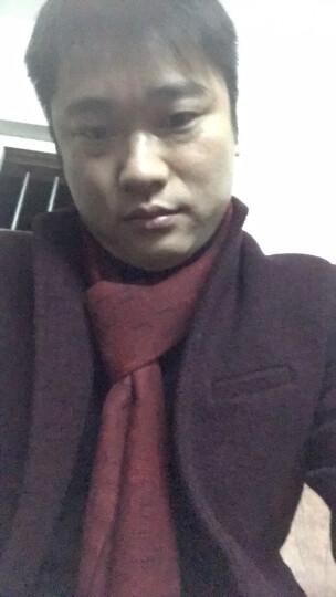俞兆林 羊毛呢大衣男装2018冬装新款商务风衣修身立领呢子大衣中长款薄款外套 301酒红 180/XL 晒单图